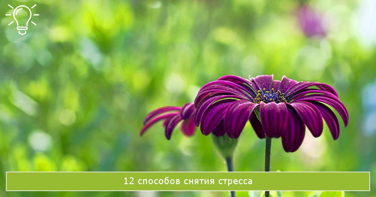 12 способов снятия стресса
