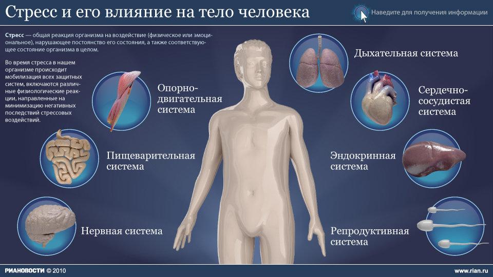 инфографика стресса #4