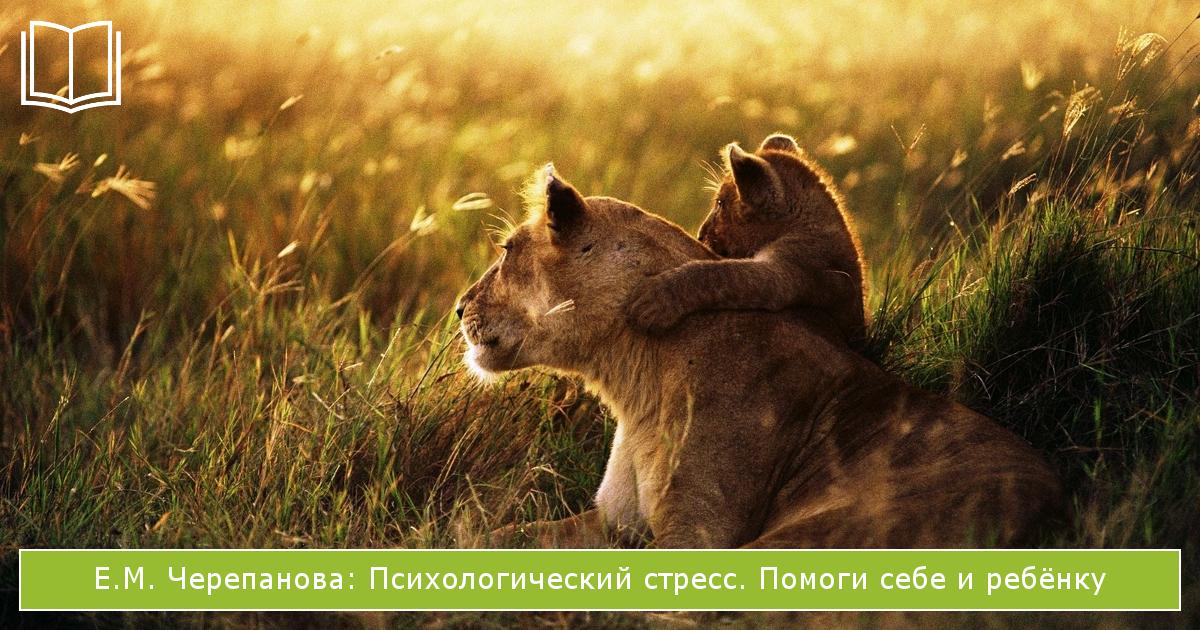 книги о стрессе: Психологический стресс. Помоги себе и ребёнку Е.М. Черепановой