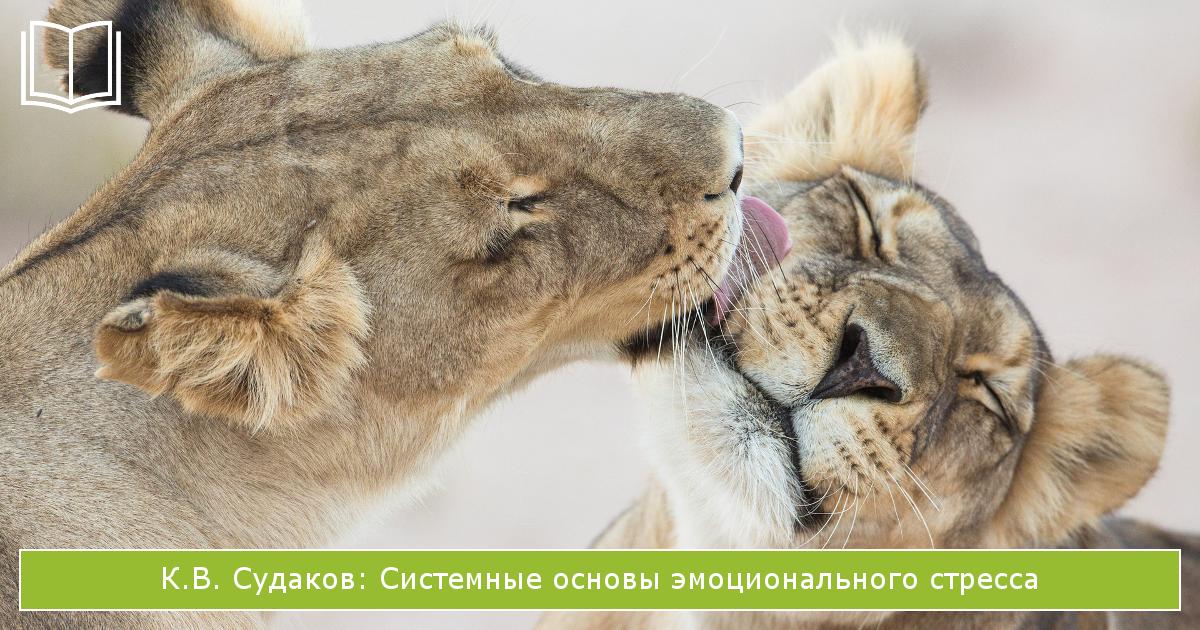 книги о стрессе: Системные основы эмоционального стресса К.В. Судакова